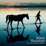 "Nuova uscita ""WATER RESISTANT"" di Salieri Negrelli Duo"