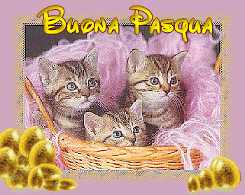gatti-pasqua2009
